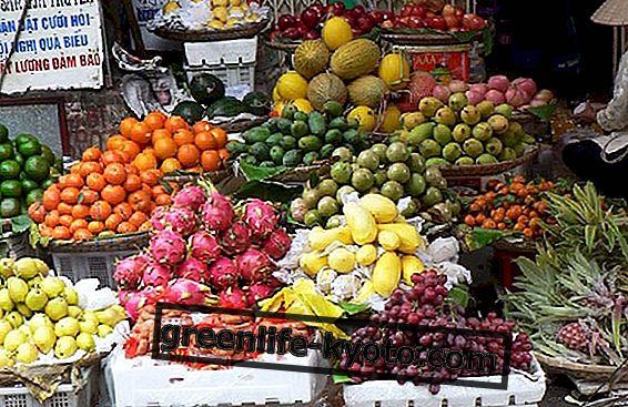 Κυνήγι φρούτων: Ποιοι είναι οι κυνηγοί φρούτων;