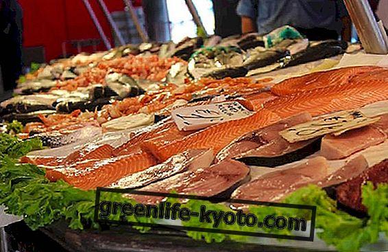Kviksølv i fisk: lad os være klare