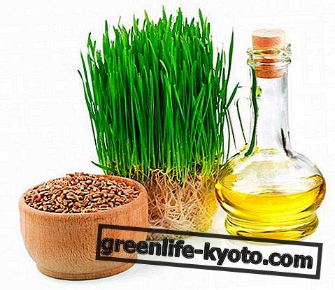 Elintarvikkeet, joissa on runsaasti fosforia, mitä ne ovat