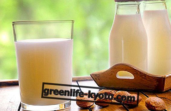 Susu almond: manfaat dan cara melakukannya