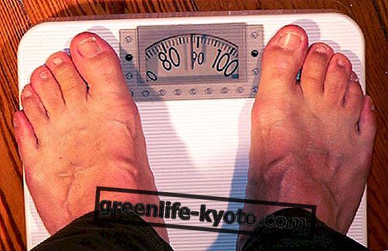 Rasvumine: milline on kaalulangus!