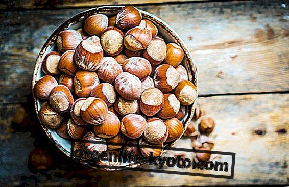 """Lískové ořechy """"mléko"""", vlastnosti a výhody"""