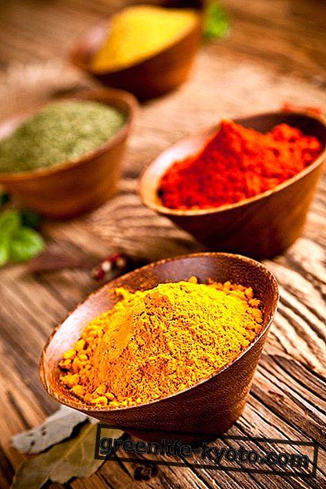 Curry: eigenschappen, gebruik, voedingswaarde