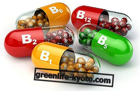Vitaminas B6 ir B12 energijos apkrovai