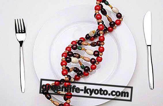 Nutrigenetics, zdraví pochází z jídla
