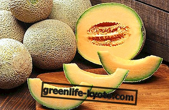 Topp frukt av juli: melonen