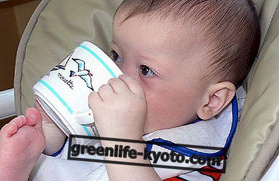Livsmedel för små barn: fruktjuicer och tillväxtmjölk