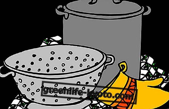 Cocina ecológica y anti-desperdicios.