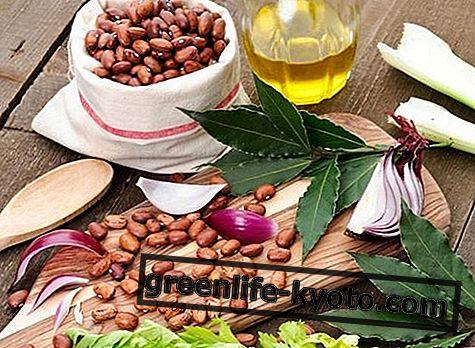 Borlottibonen: eigenschappen, voedingswaarden, calorieën