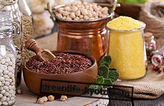 5 recetas para una carga de proteínas vegetales.