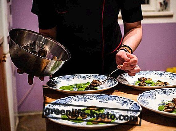 Rejser madlavning: Interview med Cibo Supersonico piger
