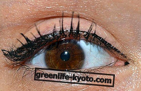 Mikroelementide iridoloogia ja integreerimine