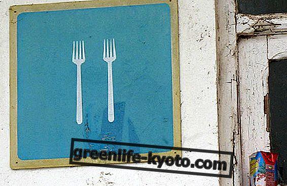 Masakan vegan: balas dendam dari garpu