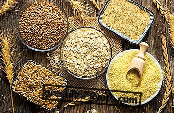 Cereales: métodos y tiempos de cocción.