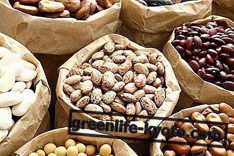 Όσπρια: λίστα, ιδιότητες, θρεπτικές τιμές