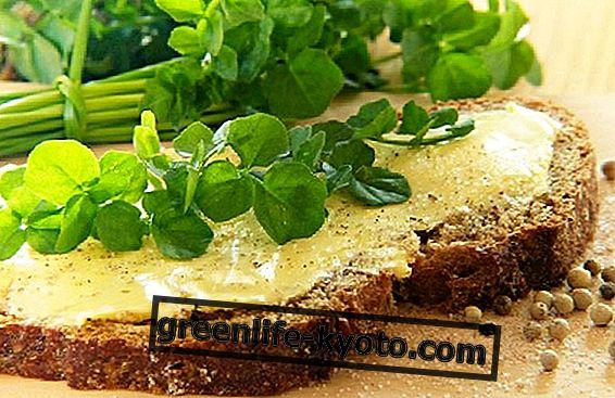 Sojin maslac, veganska alternativa