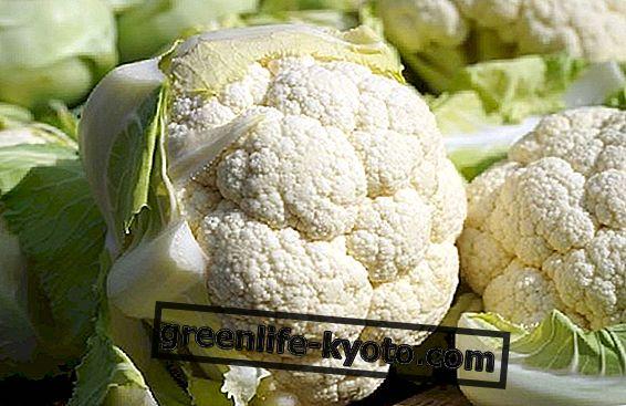 Blomkål i veganska recept