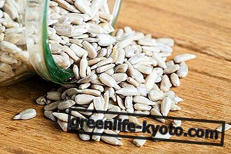 Saffloweri seemned, omadused ja nende kasutamine