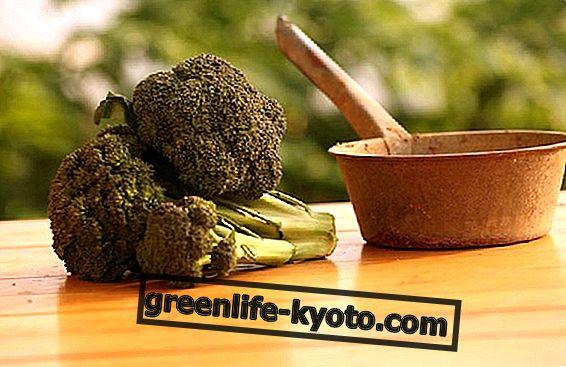 Brocoli, 3 recettes de légumes simples et rapides