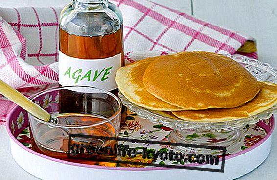 Agave: αντενδείξεις του φυσικού γλυκαντικού