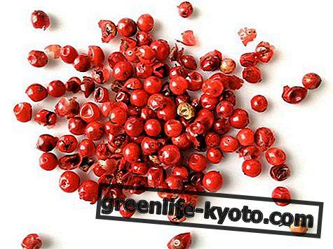 Pimienta rosa: propiedades, uso, valores nutricionales.