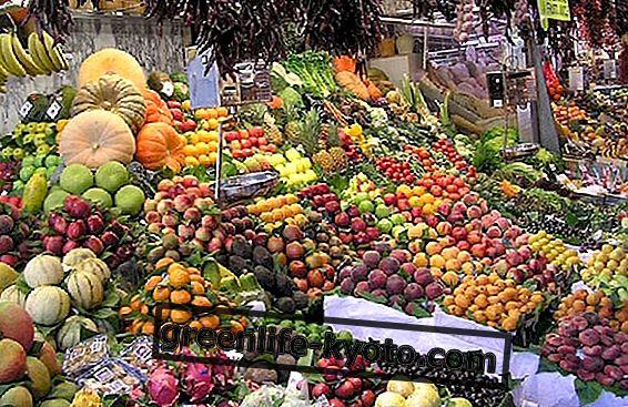 Freskarizmas: kaip keičiasi kūnas ir žemės ūkis