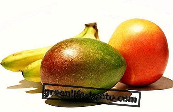 Grøn papaya, mango og banan: opskrifterne