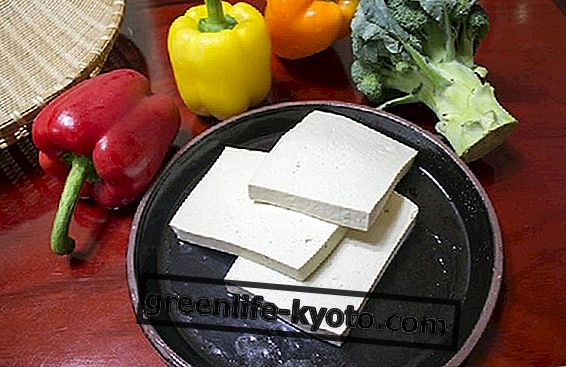 Tofu: 3 eenvoudige recepten