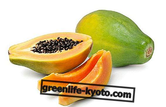 A papaya ezer tulajdonsága
