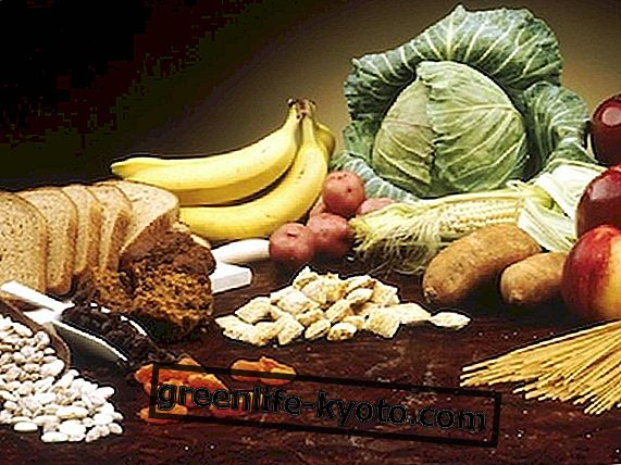 Пища для ленивого кишечника