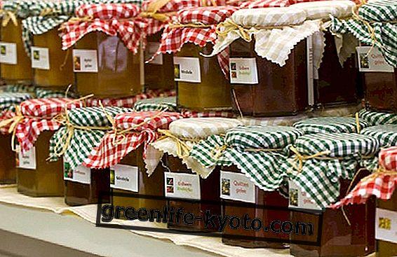 Dunja džem, pogodnosti i recept