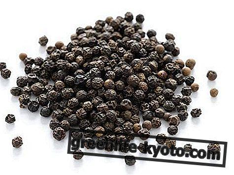 ブラックペッパー:性質、用途、栄養価