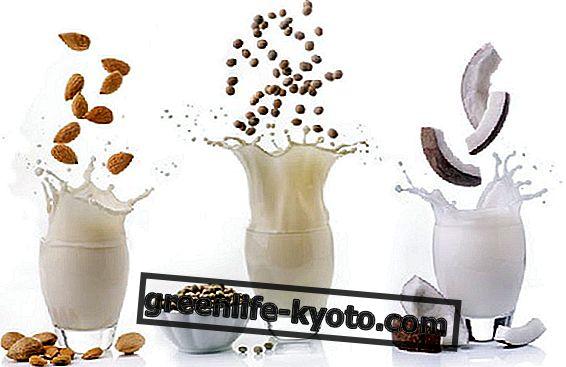 Arten von pflanzlicher Milch: ein Buch, um mehr zu erfahren