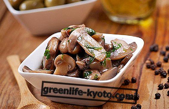 3 recepta za gljive