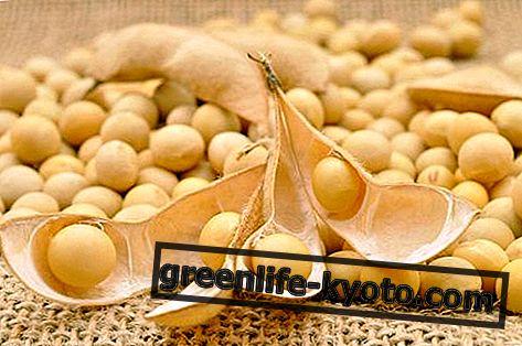 Făină de soia, proprietăți și utilizare