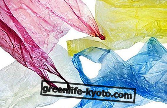 プラスチックなしで食品を保管する