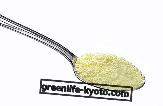 Bramborový škrob: vlastnosti, použití a recepty