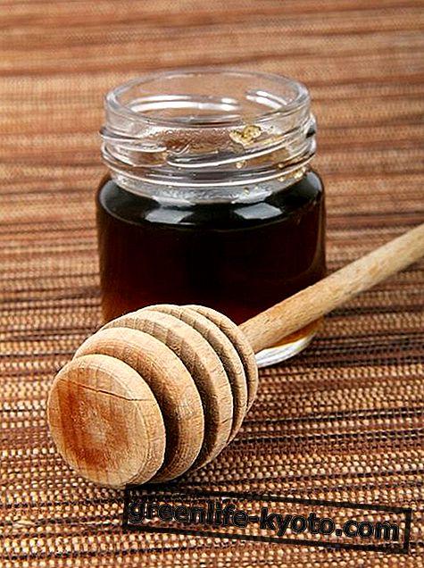 Gesztenye méz: tulajdonságok, táplálkozási értékek és felhasználás