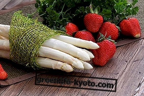 Kan frugt og grøntsager
