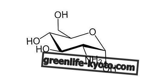 Глукозамин: шта је то и за шта се користи