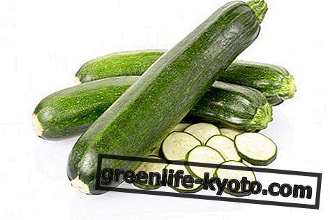 Zucchini: Eigenschaften, Nährwerte, Kalorien