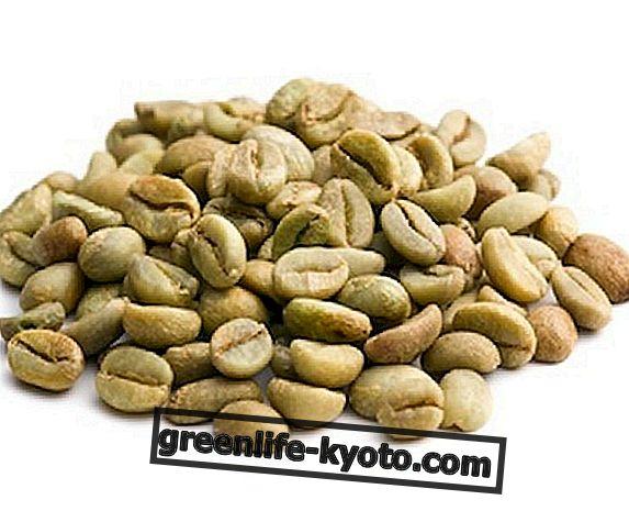 Kilo kaybı için çiğ yeşil kahve?