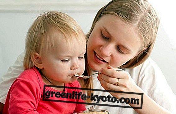 El gluten en la dieta del niño: cuándo introducirlo.