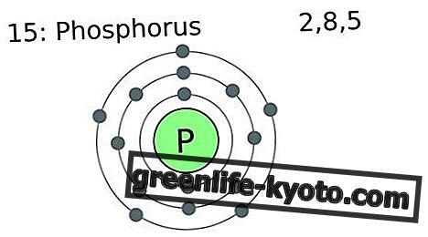 Fosforus: sifat, faedah, rasa ingin tahu