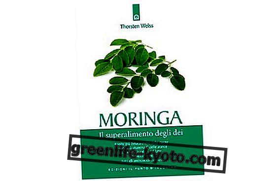 """""""Moringa, el súper alimento de los dioses"""" por Thorsten Weiss"""