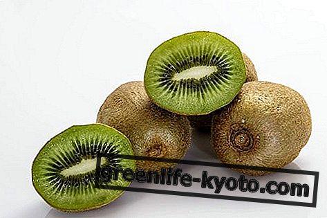 Kiwi: tulajdonságok, táplálkozási értékek, kalóriák