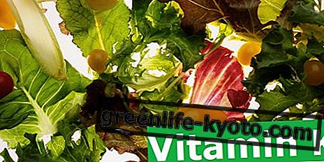 K-vitaminmangel: symptomer, årsager, ernæring