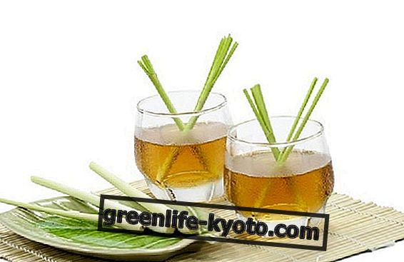 Zitronengras Tee, Eigenschaften und Vorteile