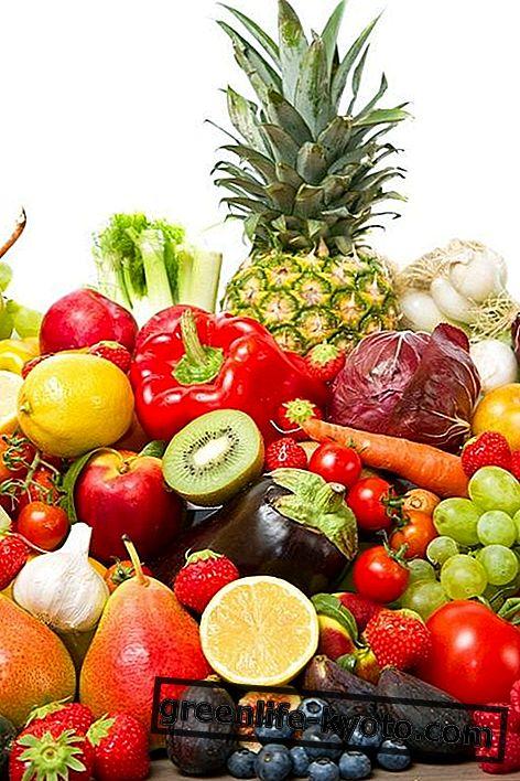 पौधों के खाद्य पदार्थ: विवरण, गुण, लाभ