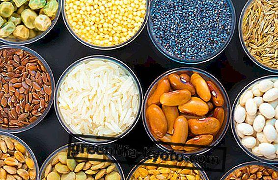 Taimsed valgud, kuidas neid dieeti integreerida